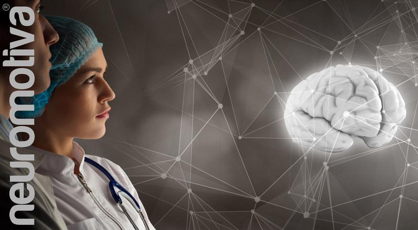 Curiosidade Cerebro NeuroMotivaTE