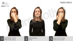 Neuromotiva vinculación hemisferios nariz-oreja