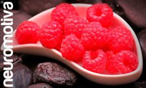 Neuronutrición: alimentos para un cerebro sano