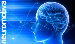 Cómo funcionan nuestras ondas cerebrales