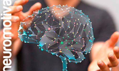 Neuróbica y Acción, gimnasia para el cerebro