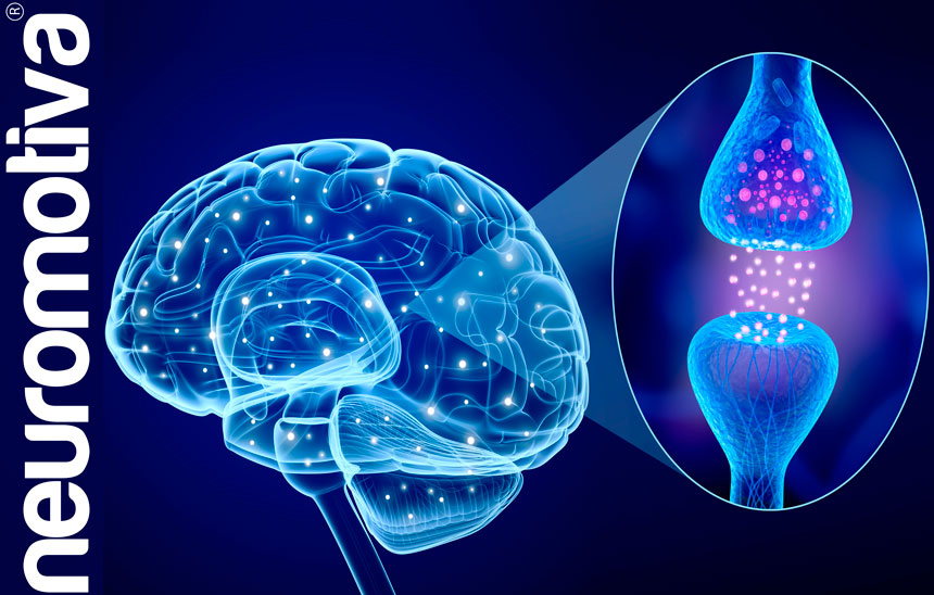 Neuroplasticidad_Neuromotiva