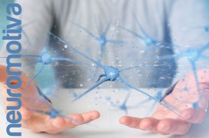 ¿Cómo cuidar tu cerebro? Neurogénesis
